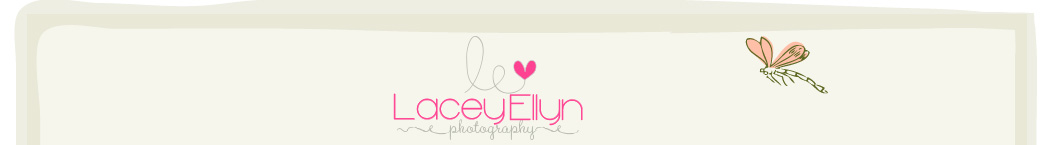 Lacey Ellyn Photography | Lake County, IL Newborn, Infant, Child, Maternity and Family Photographer logo